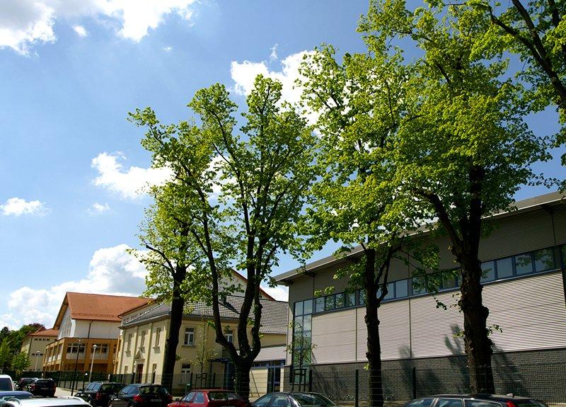 Rudolf-Hildebrand-Schule